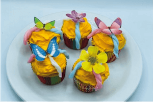 May Bake Box Butterfly Cakes Family Presents